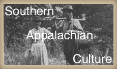 essays on southern culture
